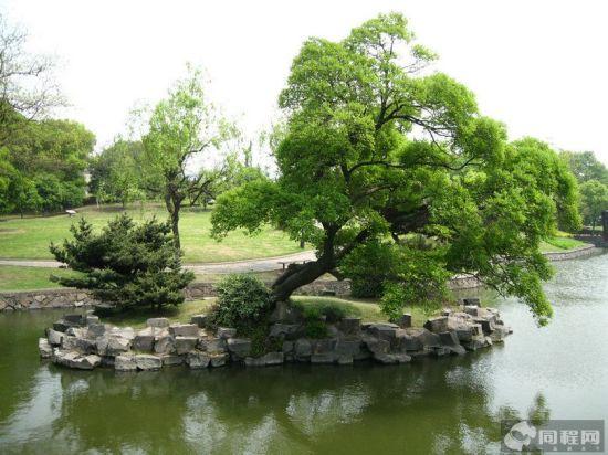 入口处的池塘