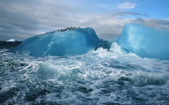 组图:前往梦境国度冰雪南极1月出发正合适