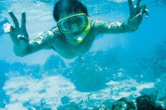 参加海岛游要注意水上安全 阙道华 摄