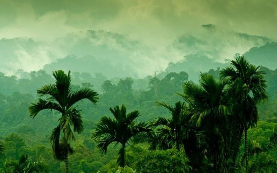 苏门答腊 印度尼西亚
