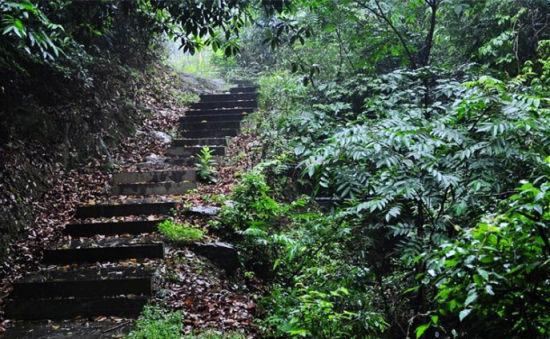 穿行山林间拾阶而上