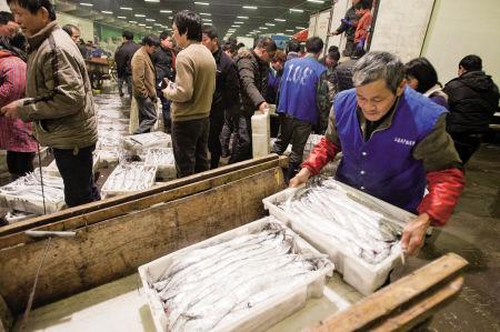昨晚,路林市场东海海鲜大量到货。 记者 唐严 摄