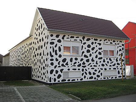 男子把房子漆成斑点状 只为纪念爱犬