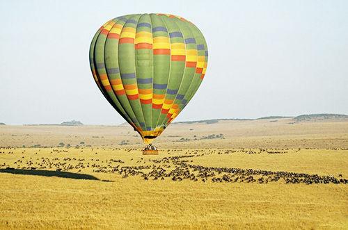 肯尼亚马赛马拉国家公园