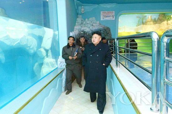 金正恩视察中央动物园