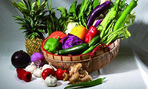 动物蔬菜包图片
