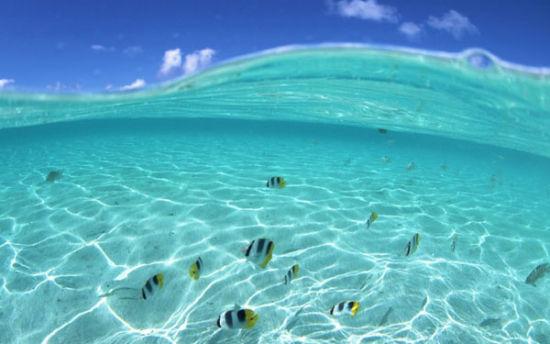 海岛游拍摄全攻略教你拍出曼妙美人儿(组图)