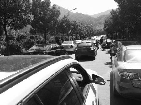 昨天,横溪镇村道上两边都停满了车。 横溪交警中队供图