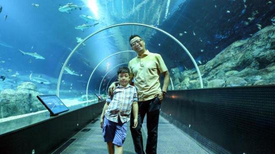 郭涛和石头在 S.E.A海洋馆的鲨鱼展区幸福合影