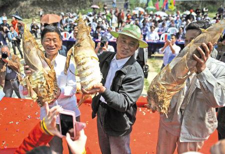13斤笋王义卖拍得3000元