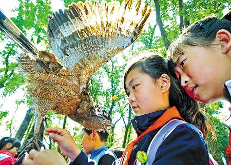 宁波举办爱鸟周活动