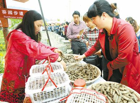 昨天上午,近万名游客蜂拥而至,品尝蛏子。图为游客正在购买肥美的长街蛏子。(徐能 陈云松 葛棉棉 摄)