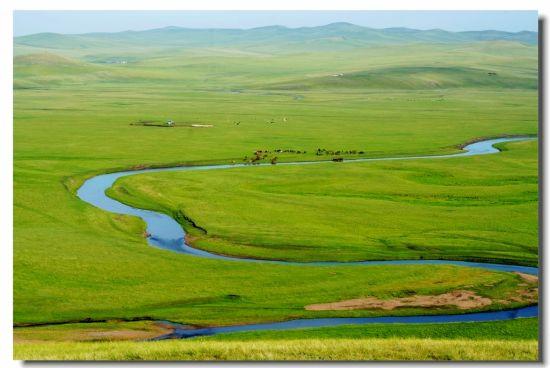 呼伦贝尔东部草原