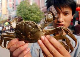 海鲜控,寄生虫,生吃螃蟹,寄生虫病