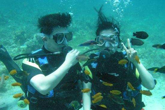 蜈支洲岛的海底世界