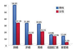 2013年宁波市恶性肿瘤死亡率男女对比图   死亡率   (1/10万)
