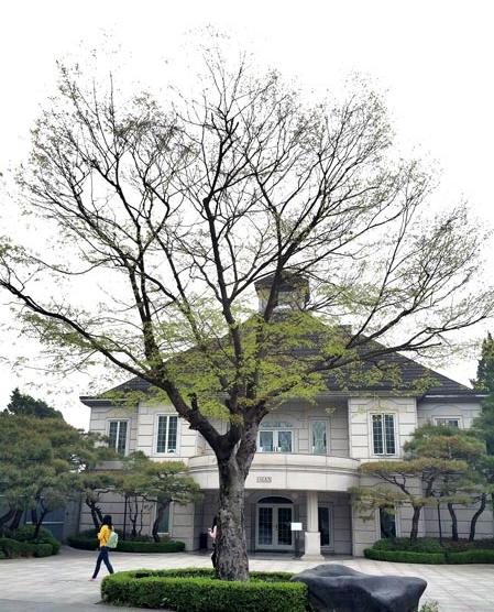 杨平Hill House(《继承者们》中金叹家豪宅外景拍摄地)