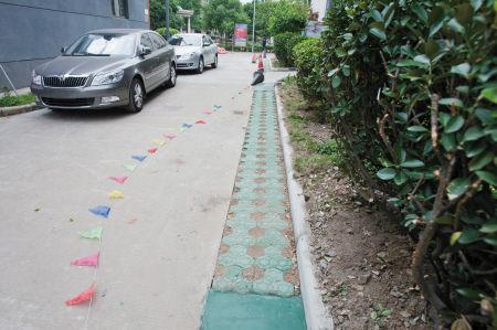 小区内部分道路的绿化带被铺上了草坪砖,以增加道路通行能力。 记者 唐严 摄