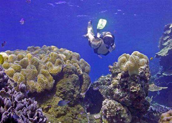 菲律宾巴拉望省爱尼岛