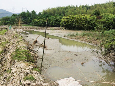 这块农田被挖坑围塘,倒入了建筑泥浆。