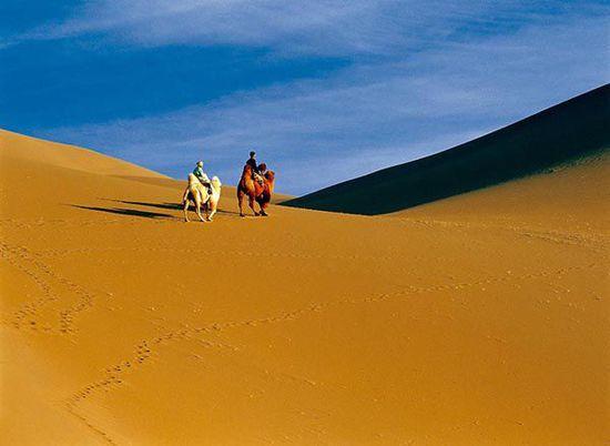 阿拉善徒步:探寻沙漠绿洲