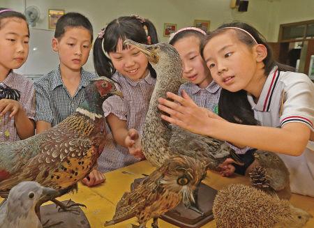 学生接触野生动物标本