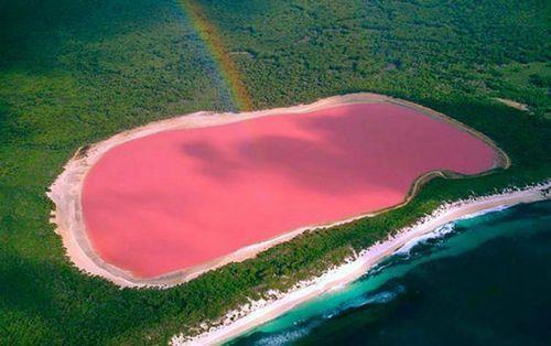 澳大利亚梦幻粉红湖泊