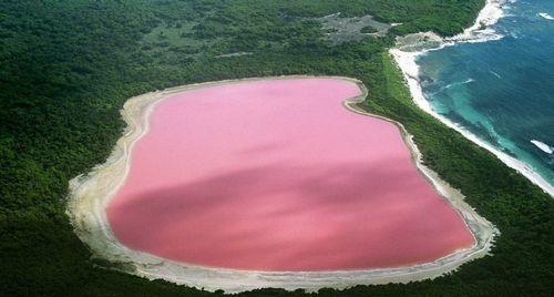 梦幻粉红湖泊