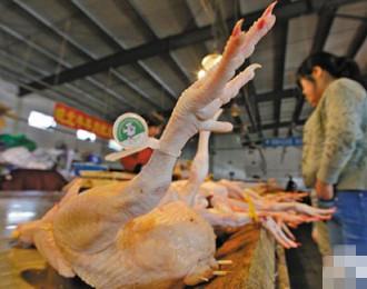 活禽交易,永久关闭,宁波主城区,杀白禽,一证两标