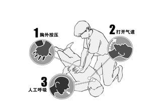 ●2010年美国心脏协会公布最新心肺复苏(CPR)指南,将此前保持气道畅通—人工呼吸—胸外心脏按压的传统步骤,调整为胸外心脏按压—保持气道畅通—人工呼吸。这一改变适用于成人、儿童和婴儿,但不包括新生儿。 制图:吴玉涵
