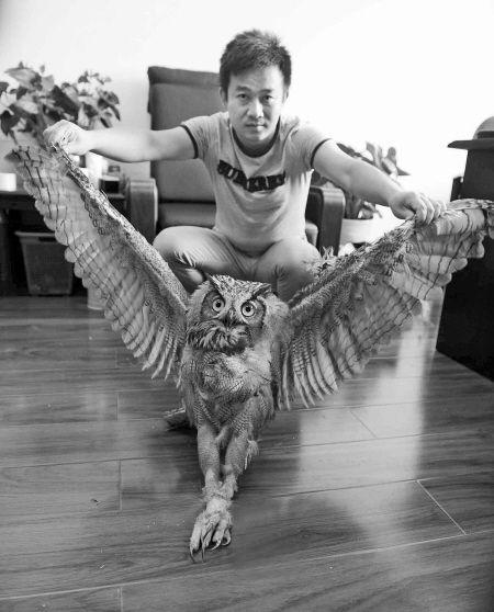 图为送到派出所的雕鸮。记者 龚国荣/摄