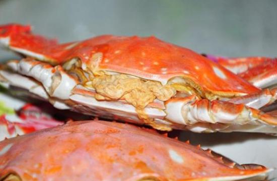 葱油鲜白蟹