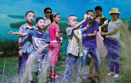小候鸟乐游杭州湾湿地