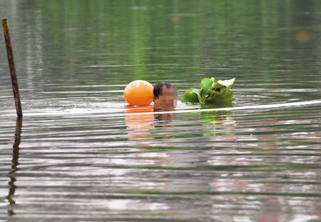 有人游到湖里摘荷叶。记者 龚国荣 摄