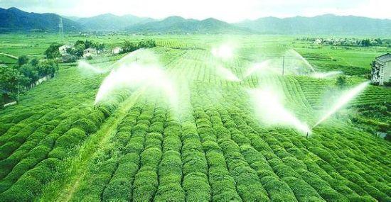 宁波农业现代化