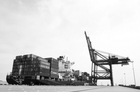 梅山码头一艘国际货轮正在紧张作业。 记者 唐严 摄