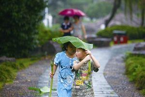 在月湖公园,两名小朋友用芭蕉叶作伞,漫步雨中 记者 张培坚 摄
