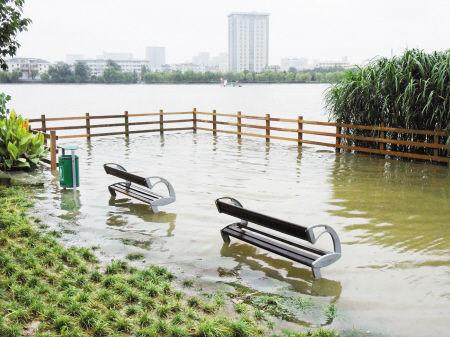 昨天上午,在天水家园旁,姚江水漫进了沿江公园内。 记者 龚国荣 摄