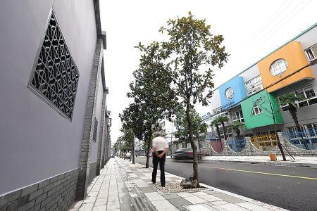 图为三市路整治后的街景。(陈栋 冯瑄 摄)