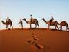 全球十大沙漠之旅