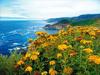自驾游览加州海岸